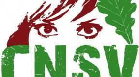 CNSV conmemora el 30 aniversario de la 'primavera campurriana' con la vista puesta en el futuro de la comarca