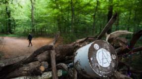 El bosque okupado de Hambach