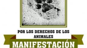 Manifestación por los derechos de los animales
