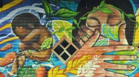 Zomo newen, vidas de mujeres mapuce