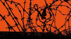 Presos y presas en lucha. Una voluntad a prueba de torturas